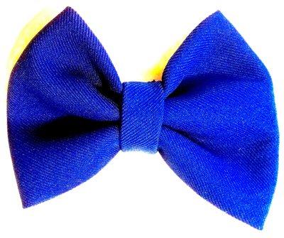 Royal Blue Bow Tie MT107